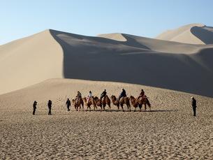 砂漠のキャラバンの写真素材 [FYI01194638]