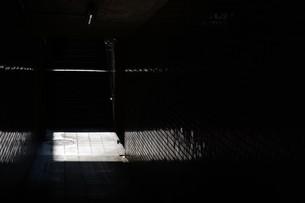 抽象 / 地下道の光と影の写真素材 [FYI01194679]