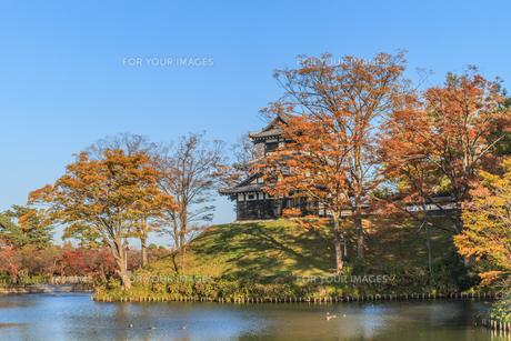 秋の高田城の風景の写真素材 [FYI01194836]