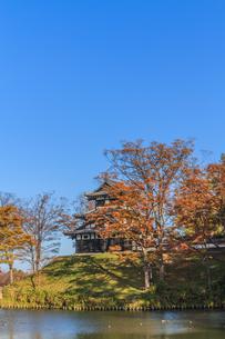 秋の高田城の風景の写真素材 [FYI01194838]