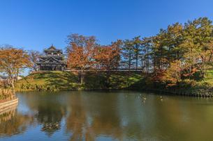秋の高田城の風景の写真素材 [FYI01194840]