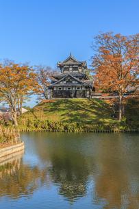 秋の高田城の風景の写真素材 [FYI01194841]