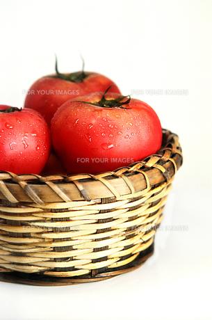 カゴ入りのトマトの写真素材 [FYI01194918]