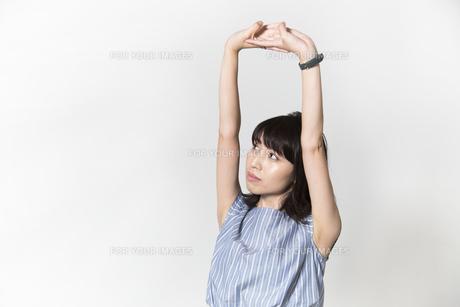 ストレッチをする若い女性の写真素材 [FYI01195004]