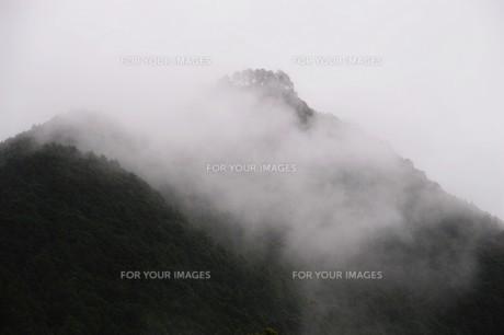 霧の山なみ・晩秋の山里の写真素材 [FYI01195035]