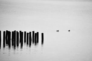 暮色・筑後川の写真素材 [FYI01195054]