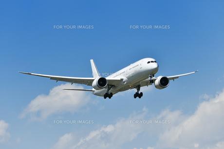 着陸中の旅客機の写真素材 [FYI01195199]