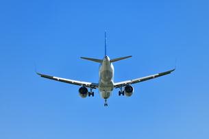 着陸中の旅客機の写真素材 [FYI01195201]