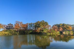 秋の高田城の風景の写真素材 [FYI01195434]