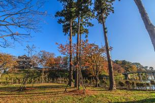 秋の高田城の風景の写真素材 [FYI01195436]