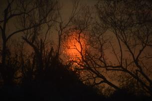 日本の風景 / 陽を浴びて炎のごとく燃ゆる河 / 九州 筑後川の写真素材 [FYI01195536]