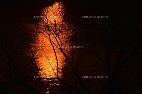 日本の風景 / 陽を浴びて炎のごとく燃ゆる河 / 九州 筑後川の写真素材 [FYI01195537]