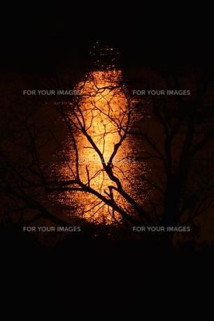 日本の風景 / 陽を浴びて炎のごとく燃ゆる河 / 九州 筑後川の写真素材 [FYI01195540]
