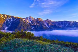 八方尾根から見た朝日を浴びた白馬三山の写真素材 [FYI01195641]