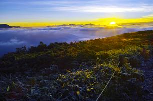 八方尾根から見た日の出と雲海の写真素材 [FYI01195642]