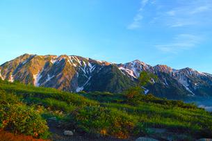 八方尾根から見た朝日を浴びた白馬三山の写真素材 [FYI01195645]