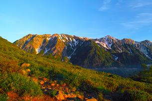 八方尾根から見た朝日を浴びた白馬三山の写真素材 [FYI01195646]