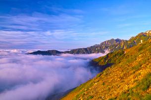朝日を浴びた新緑の八方池と白馬三山の写真素材 [FYI01195653]