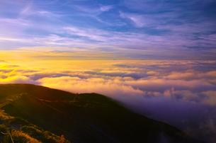 八方尾根から見た朝焼けに輝く雲海の写真素材 [FYI01195655]