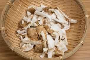 割いた松茸 の写真素材 [FYI01195776]