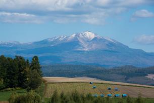 初冠雪の高い山 大雪山の写真素材 [FYI01195949]