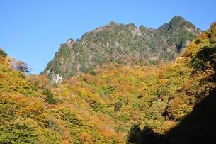 紅葉の鶏冠山の写真素材 [FYI01195970]