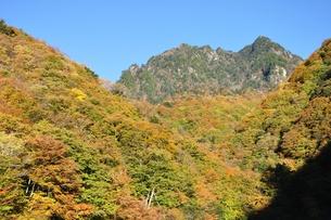 紅葉の鶏冠山の写真素材 [FYI01195971]
