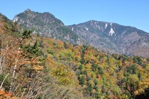 紅葉の鶏冠山と木賊山の写真素材 [FYI01196009]