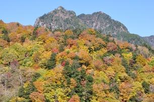 紅葉の鶏冠山の写真素材 [FYI01196013]