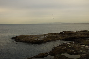 夕暮れの江の島(岩屋)の写真素材 [FYI01196052]