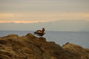 夕暮れの江の島(岩屋)の写真素材 [FYI01196072]