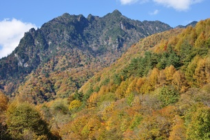 紅葉の西沢渓谷より鶏冠山の写真素材 [FYI01196293]