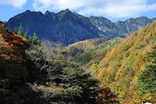 紅葉の西沢渓谷より鶏冠山の写真素材 [FYI01196300]