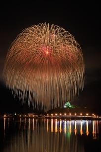 唐津の夜空に咲く花の写真素材 [FYI01196485]