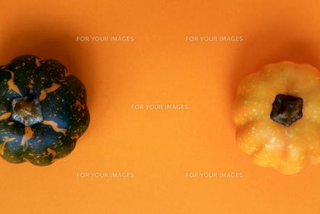 ハロウィンをイメージしたデコレーションの静物の写真素材 [FYI01196558]