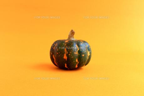 ハロウィンをイメージしたデコレーションの静物の写真素材 [FYI01196560]