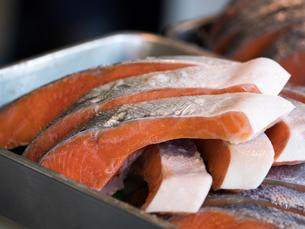 塩鮭の写真素材 [FYI01196611]