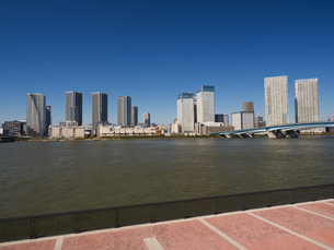 豊洲から眺めた晴海の高層ビルの写真素材 [FYI01196707]