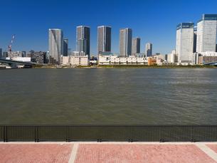 豊洲から眺めた晴海の高層ビルの写真素材 [FYI01196708]