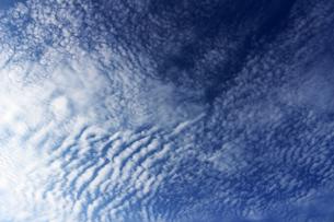 見上げた青空に広がる雲の写真素材 [FYI01196779]