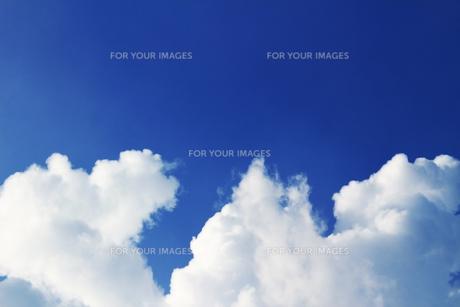 夏の青空の下の雲の写真素材 [FYI01196789]