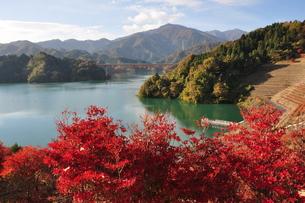 宮ヶ瀬湖の秋の写真素材 [FYI01196837]