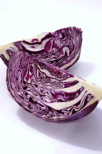 紫キャベツの写真素材 [FYI01197157]