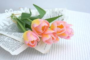 ピンク色のチューリップの写真素材 [FYI01197187]