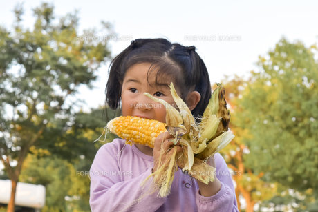 とうもろこしと女の子の写真素材 [FYI01197333]