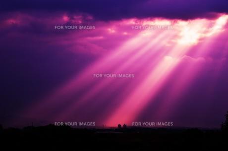 光芒・天使のはしご(薄明光線)の写真素材 [FYI01197498]