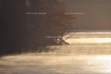 川霧の朝の写真素材 [FYI01197533]