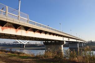 かながわの橋100選 相模大橋の写真素材 [FYI01197560]