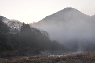 川霧の道志川の写真素材 [FYI01197741]