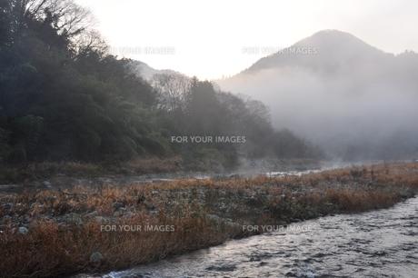 川霧の道志川の写真素材 [FYI01197742]
